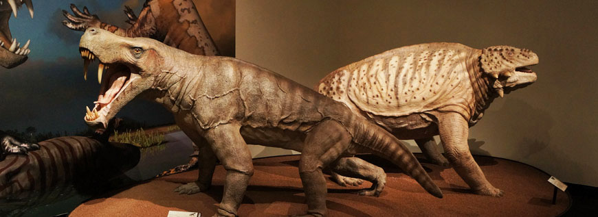 Museum Quality Life Models - Inostrancevia & Scutosaurus - Traveling Exhibition Permian Monsters